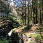 The Hafod Estate. Ceredigion