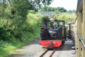 Vale of Rheidol Steam Train